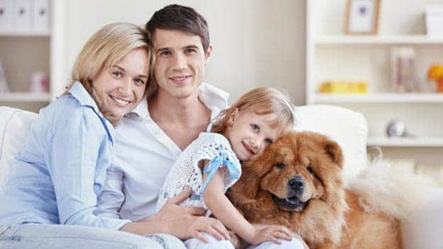 Wills & Trusts dog-young-family Direct Wills Thetford